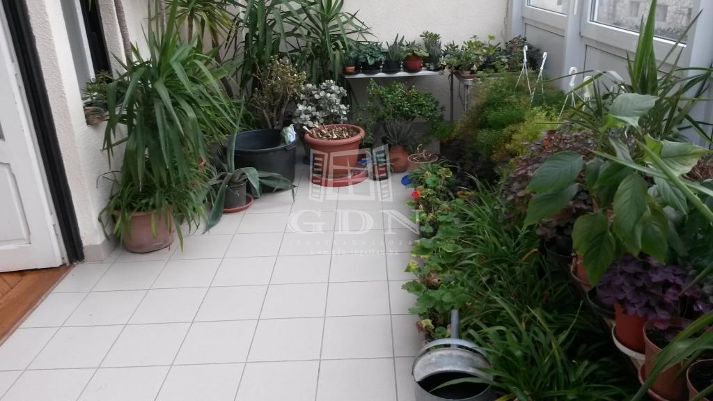 http://www.gdn-ingatlan.hu/nagy_kep/happypecs/gdn-ingatlan-228788-1521004257.85-watermark.jpg