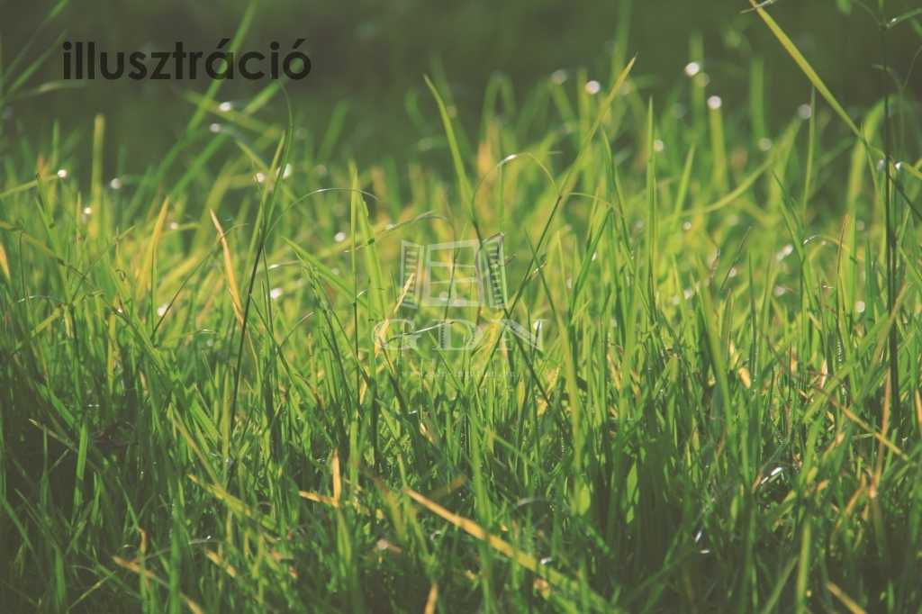 http://www.gdn-ingatlan.hu/nagy_kep/marczkft/gdn-ingatlan-194004-1533044802.56-watermark.jpg